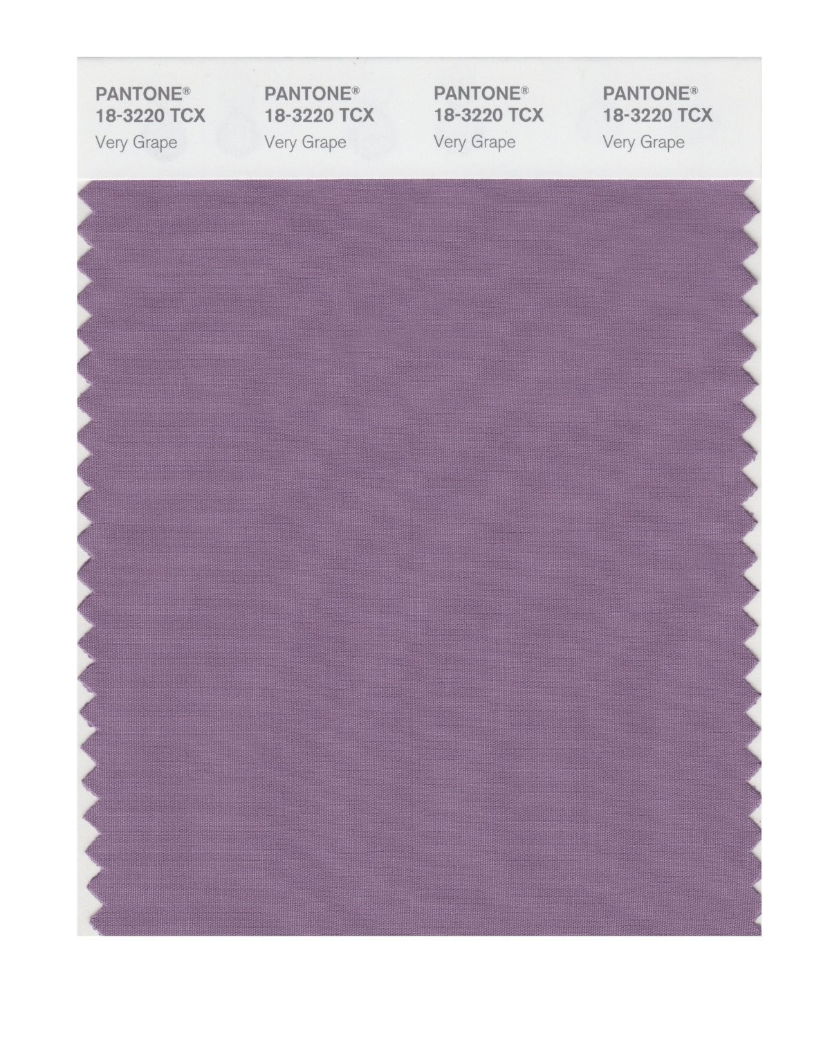 Pantone 18-3220 TCX Swatch Card Very Grape