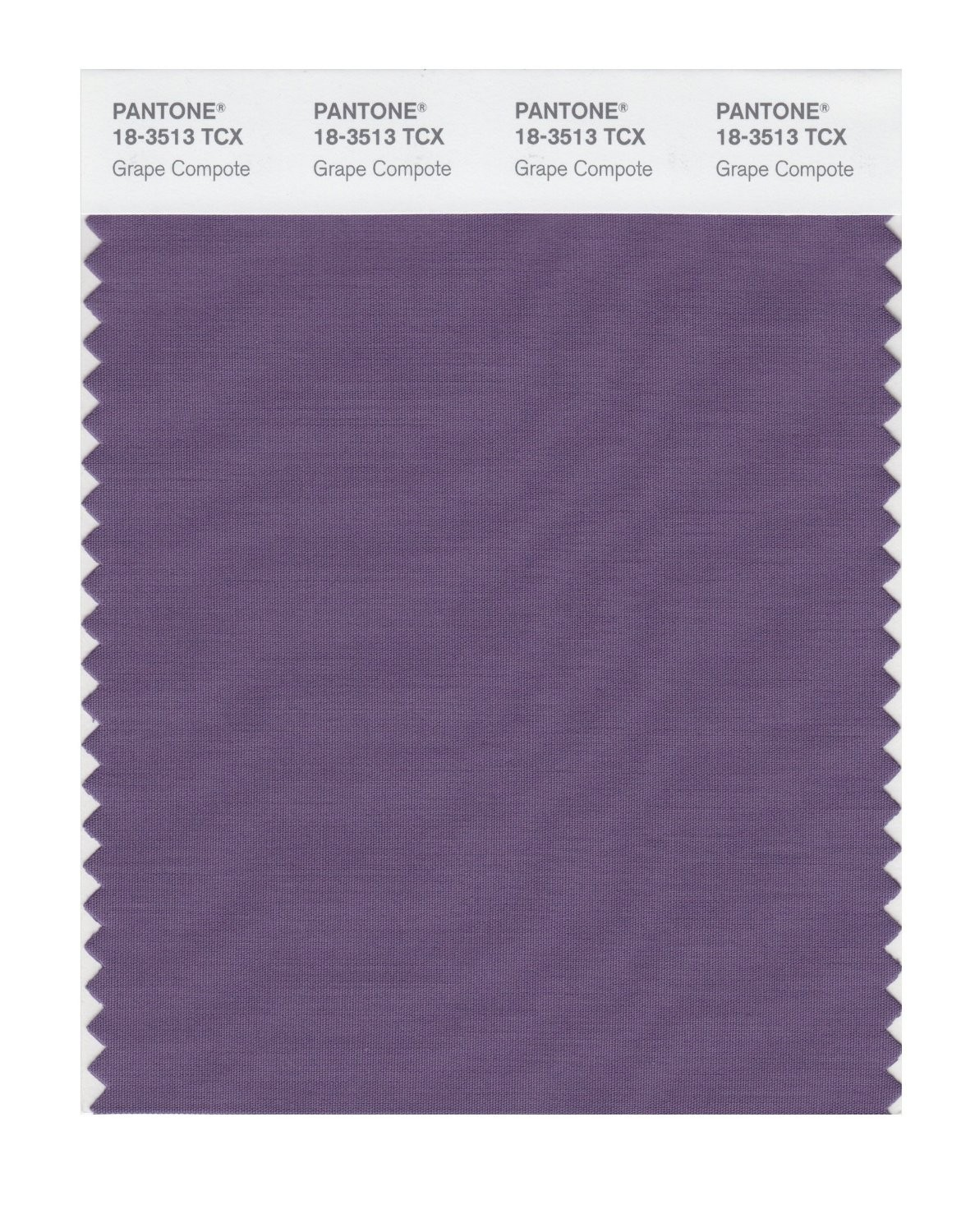 Pantone 18-3513 TCX Swatch Card Grape Compote