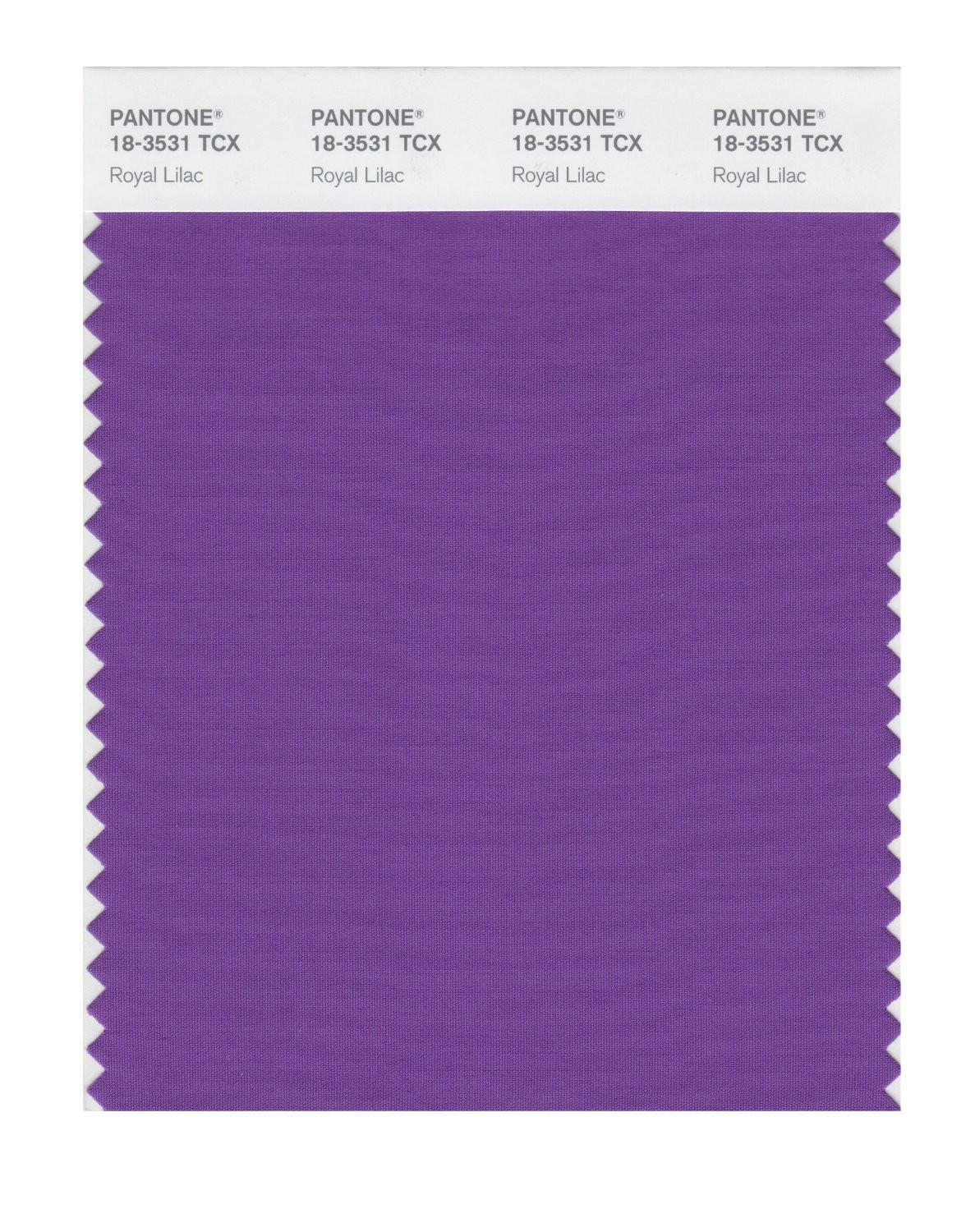 Pantone 18-3531 TCX Swatch Card Royal Lilac