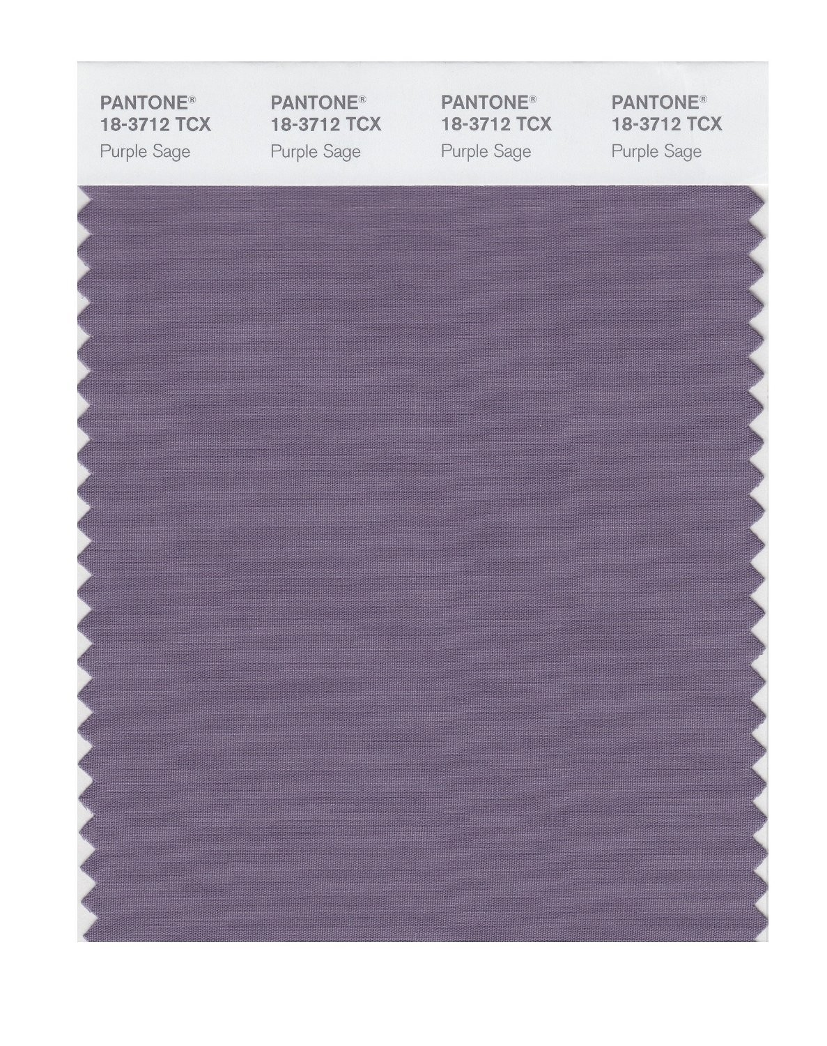 Pantone 18-3712 TCX Swatch Card Purple Sage