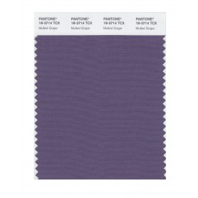 Pantone 18-3714 TCX Swatch Card Mulled Grape