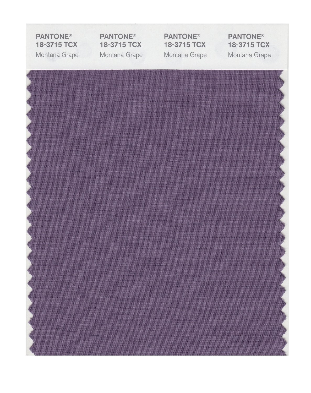 Pantone 18-3715 TCX Swatch Card Montana Grape