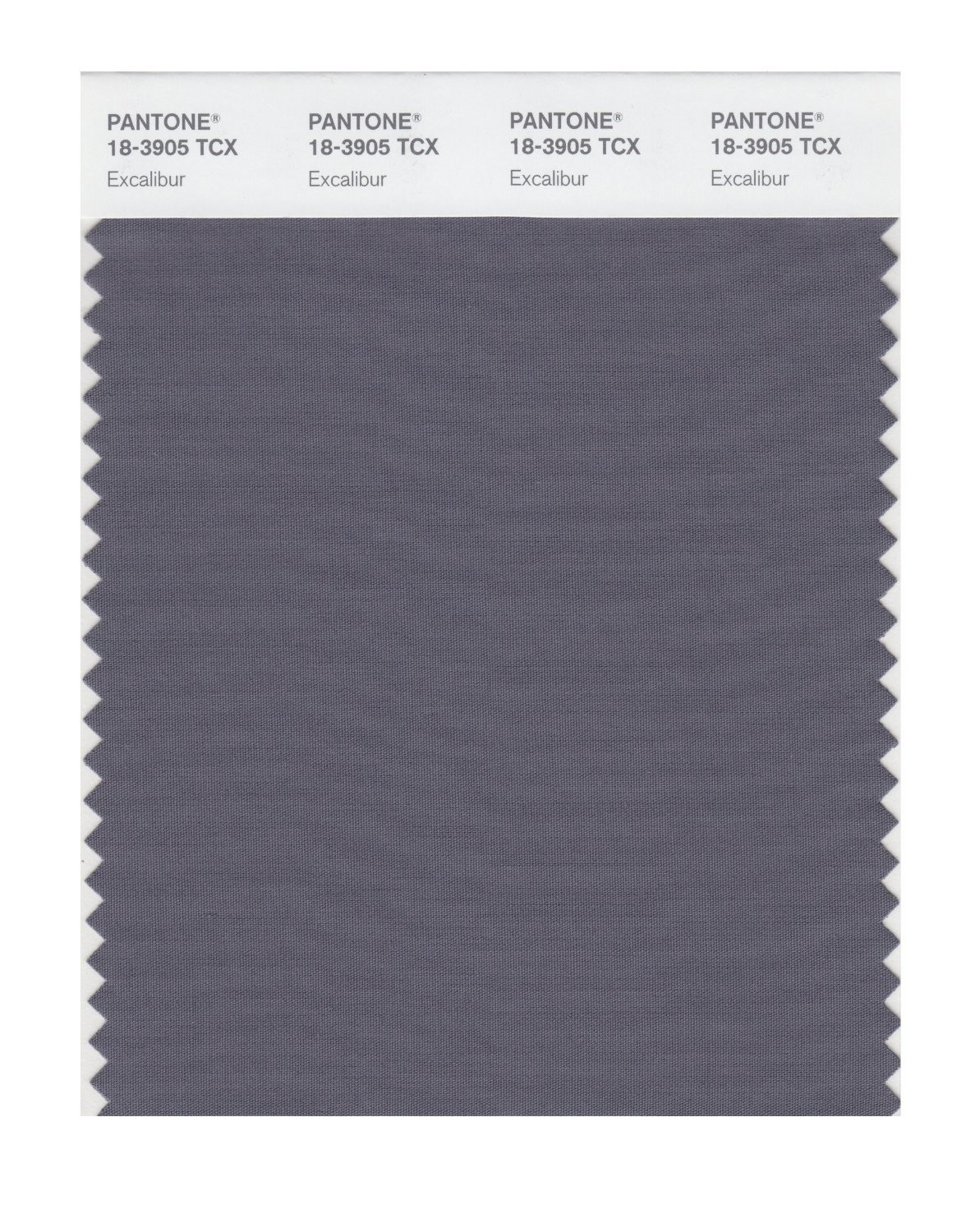 Pantone 18-3905 TCX Swatch Card Excalibur