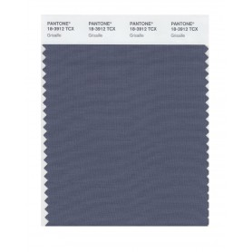 Pantone 18-3912 TCX Swatch Card Grisaille