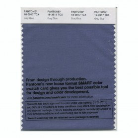 Pantone 18-3917 TCX Swatch Card Gary Blue