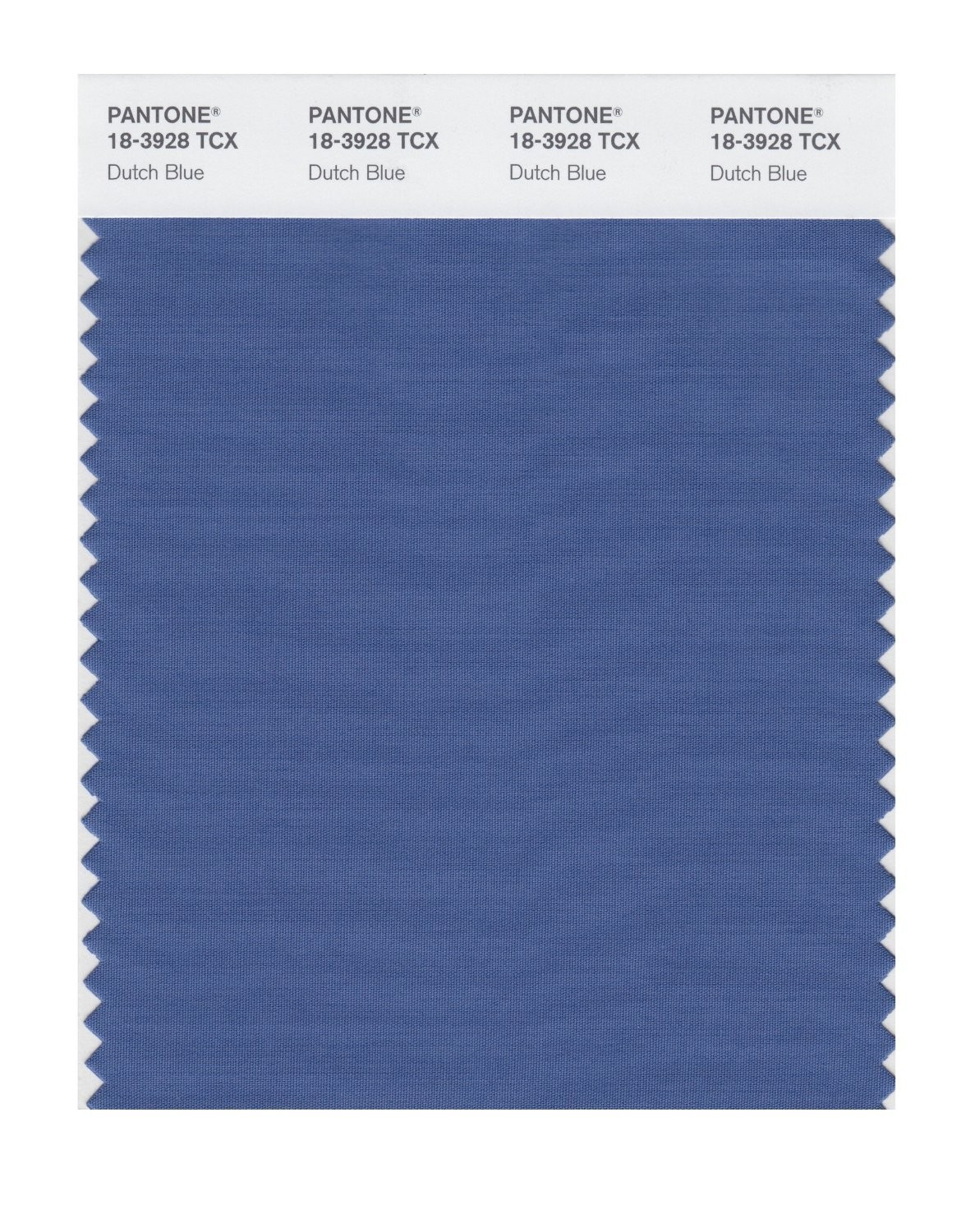 Pantone 18-3928 TCX Swatch Card Dutch Blue