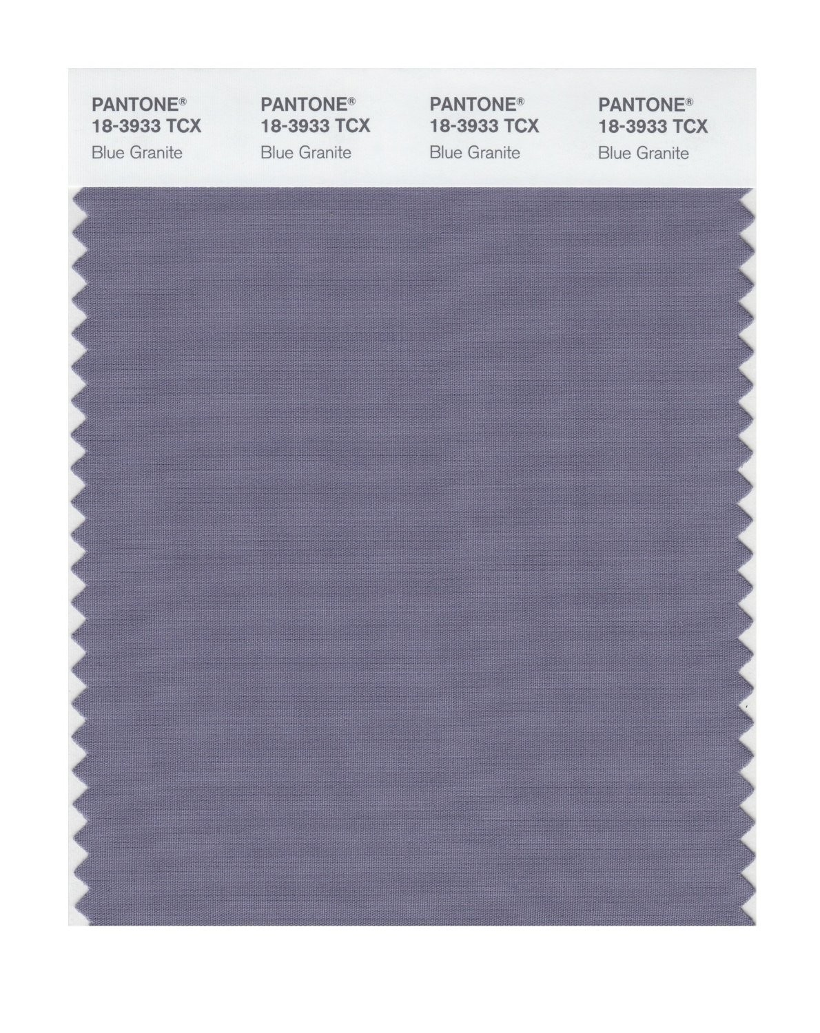 Pantone 18-3933 TCX Swatch Card Blue Granite
