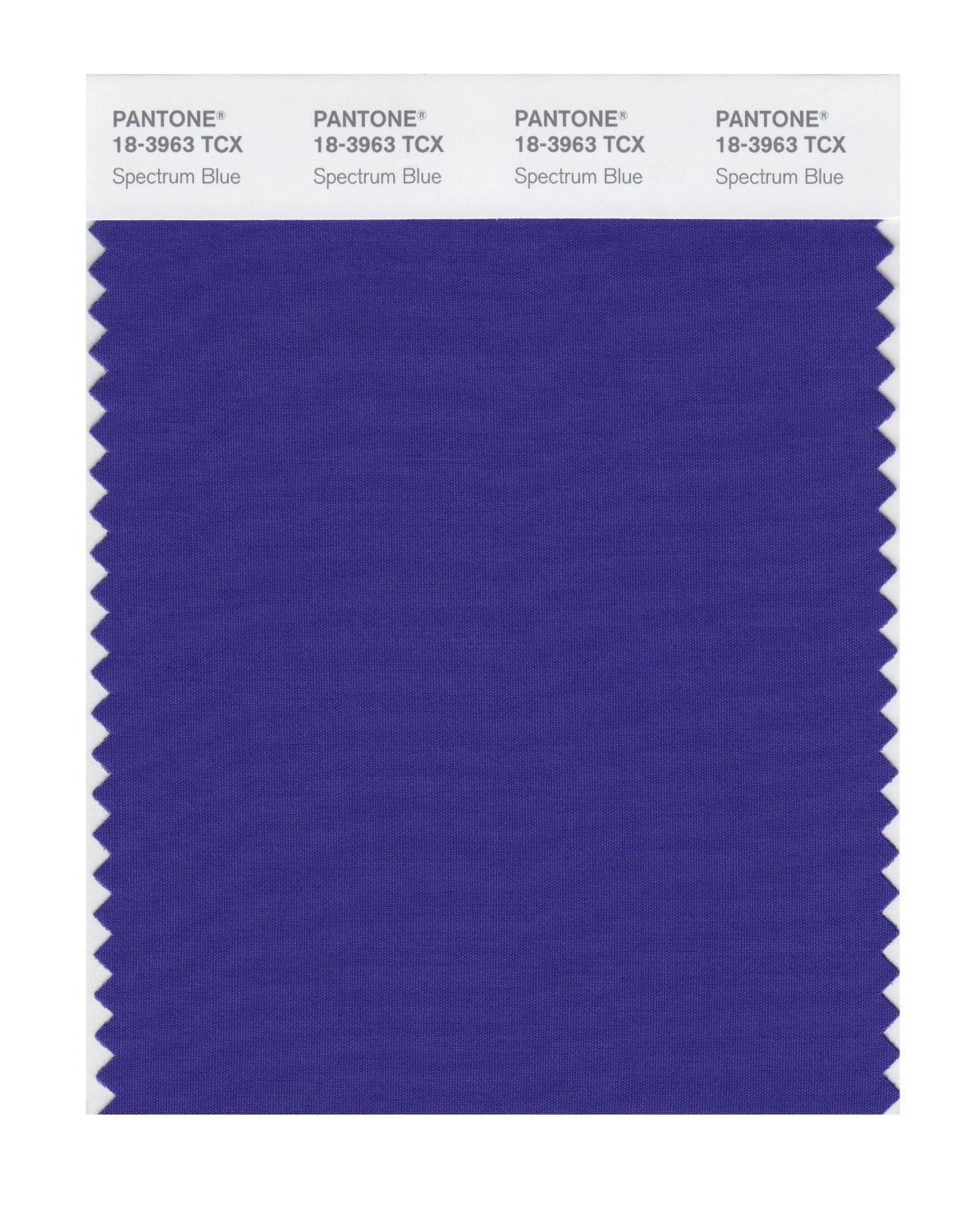 Pantone 18-3963 TCX Swatch Card Spectrum Blue