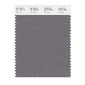 Pantone 18-4005 TCX Swatch Card Steel Gray