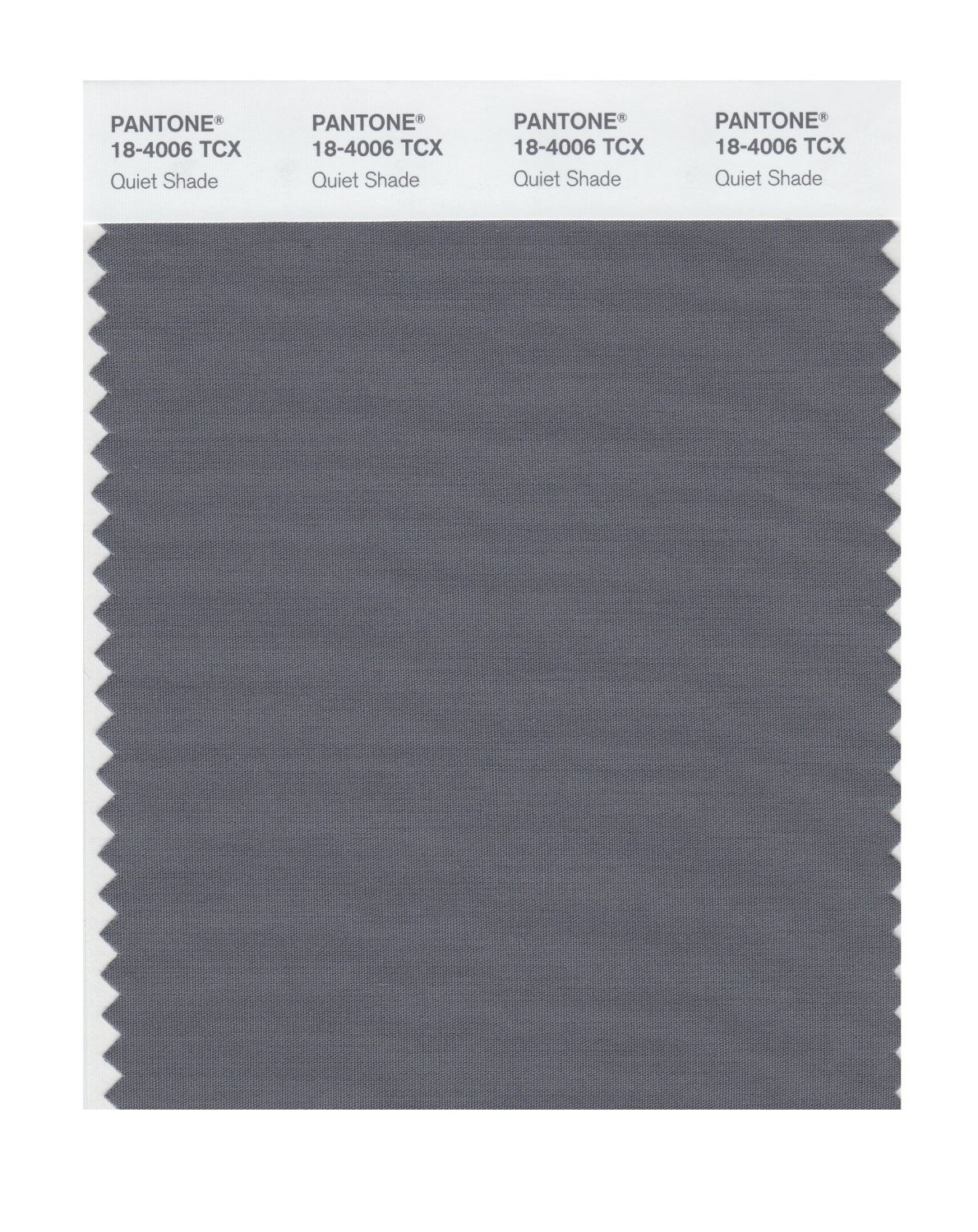 Pantone 18-4006 TCX Swatch Card Quiet Shade