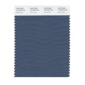 Pantone 18-4028 TCX Swatch Card Bering Sea