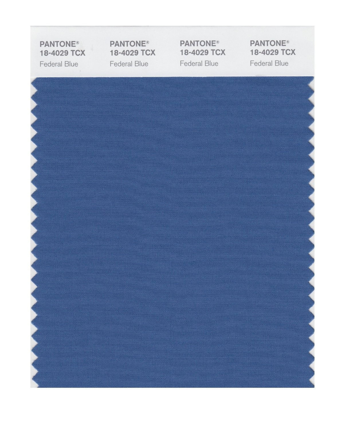 Pantone 18-4029 TCX Swatch Card Federal Blue