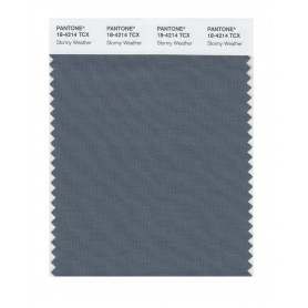 Pantone 18-4214 TCX Swatch Card Stormy Weather