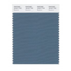 Pantone 18-4217 TCX Swatch Card Bluestone