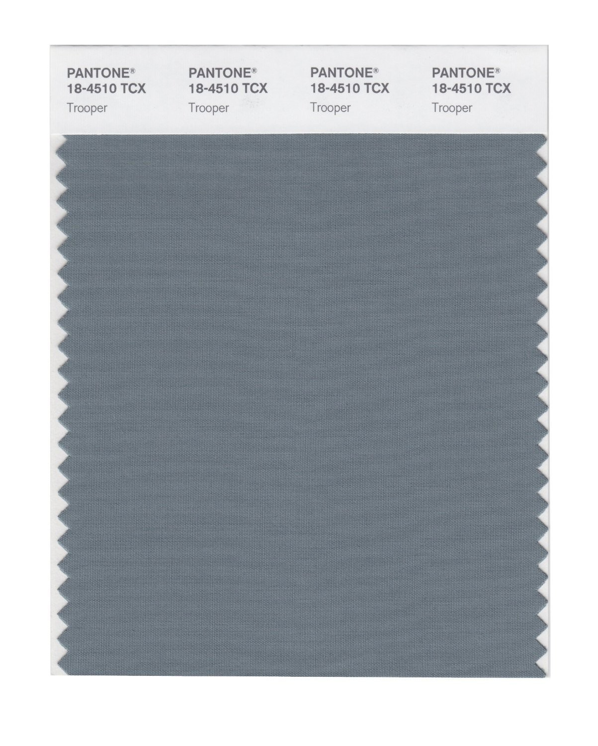 Pantone 18-4510 TCX Swatch Card Trooper