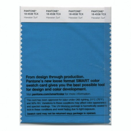 Pantone 18-4538 TCX Swatch Card Smoked Pearl