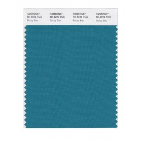 Pantone 18-4726 TCX Swatch Card Biscay Bay