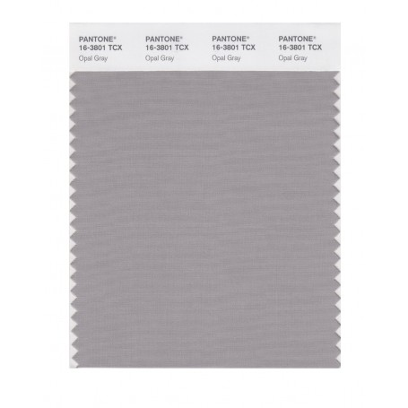 Pantone 16-3801 TCX Swatch Card Opal Gray