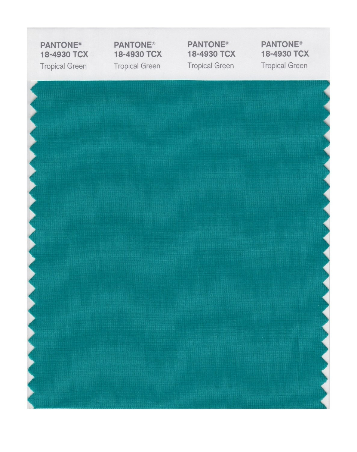 Pantone 18-4930 TCX Swatch Card Tropical Green