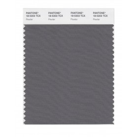 Pantone 18-5203 TCX Swatch Card Pewter