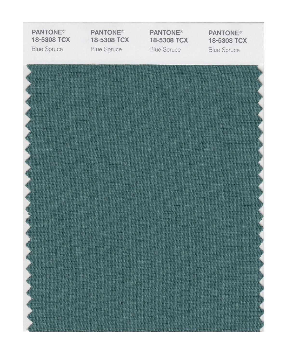 Pantone 18-5308 TCX Swatch Card Blue Spruce