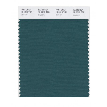 Pantone 18-5315 TCX Swatch Card Smoked Pearl