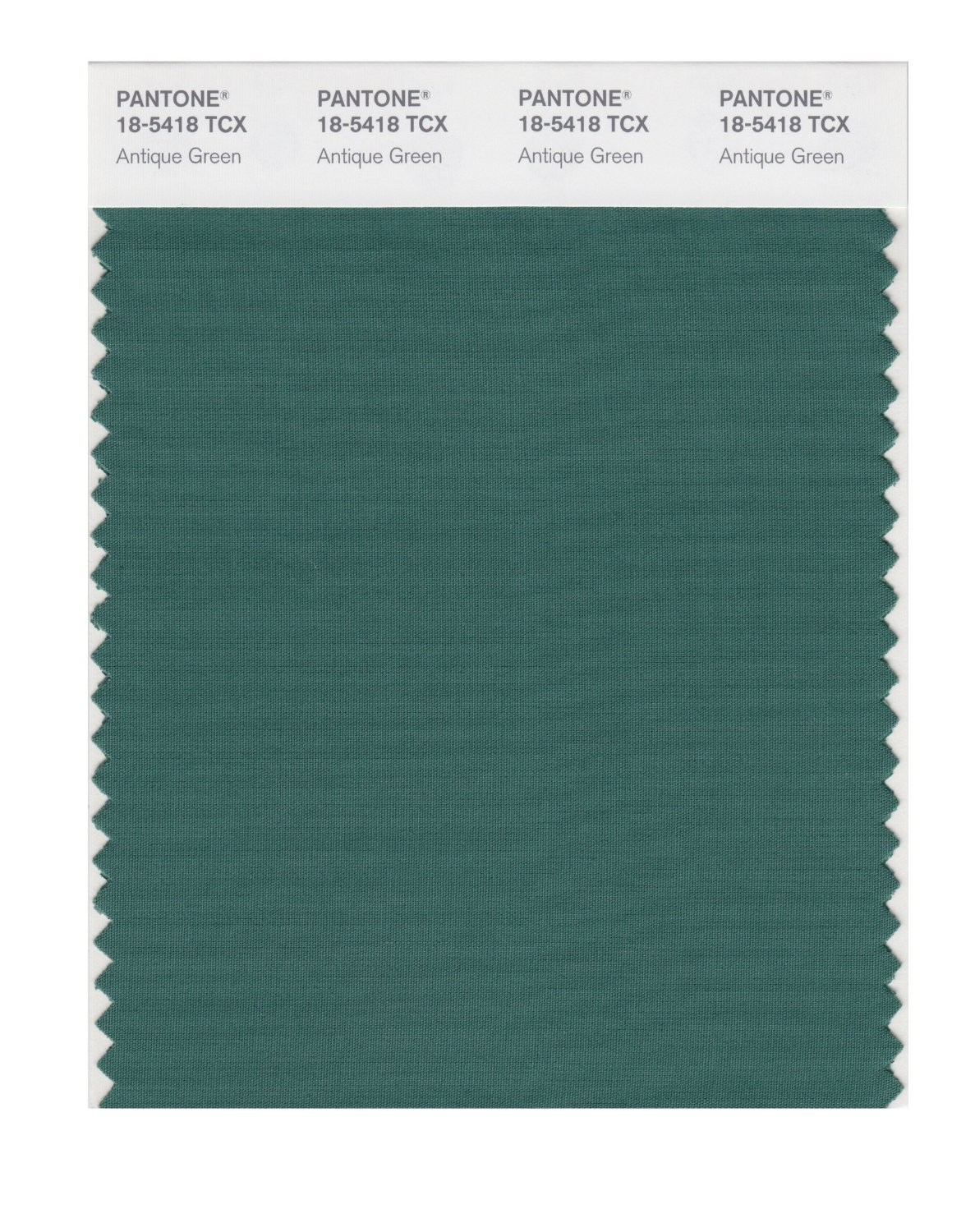 Pantone 18-5418 TCX Swatch Card Antique Green
