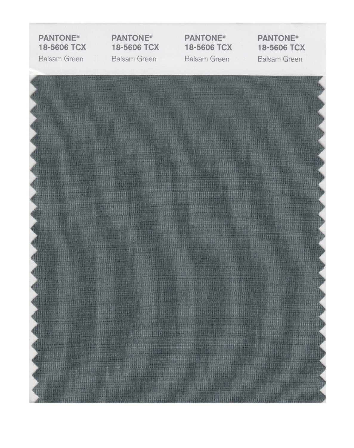 Pantone 18-5606 TCX Swatch Card Balsam Green