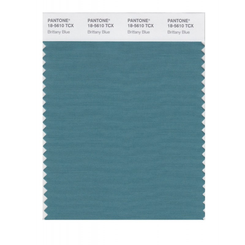 Pantone 18-5610 TCX Swatch Card Smoked Pearl