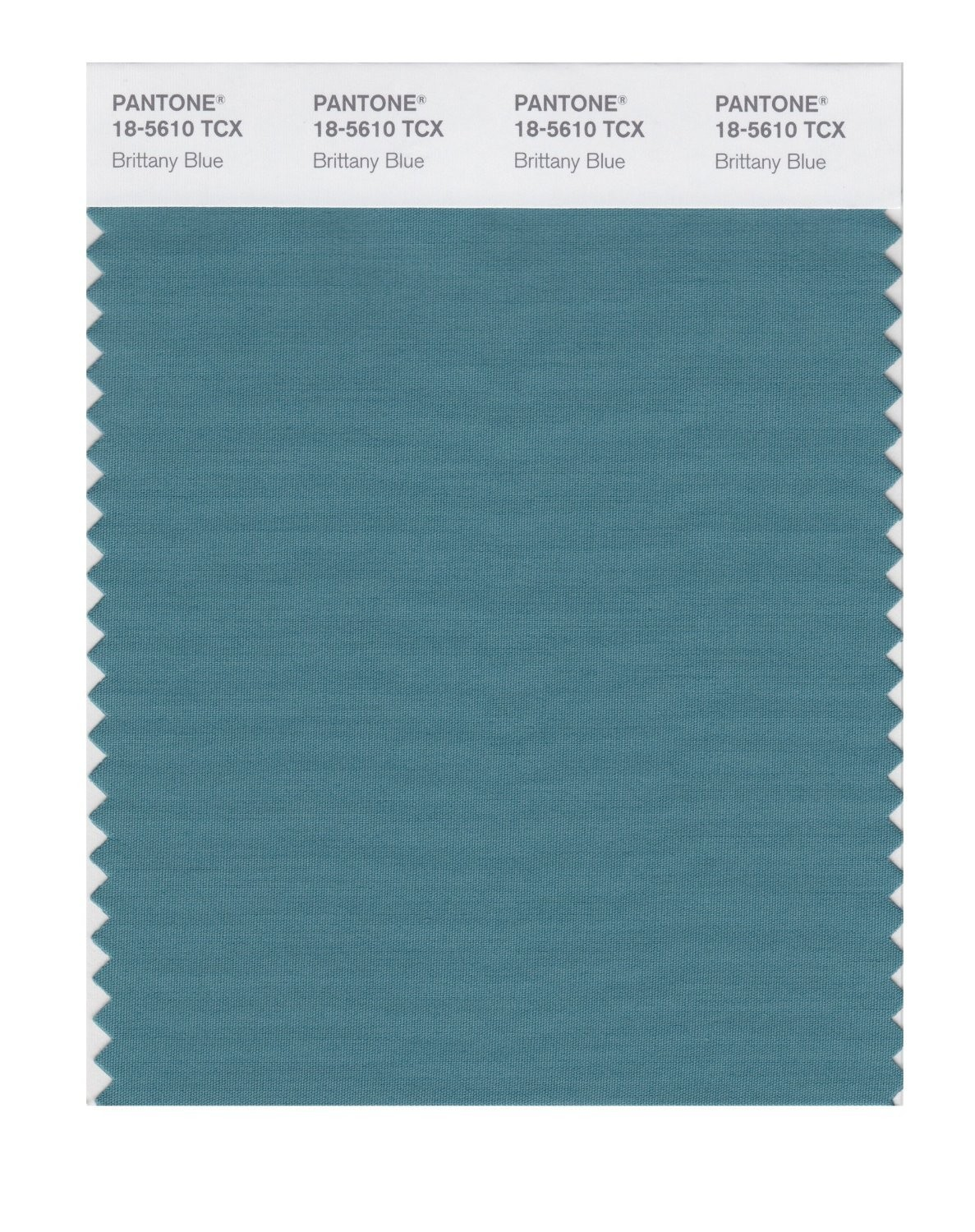 Pantone 18-5610 TCX Swatch Card Brittany Blue