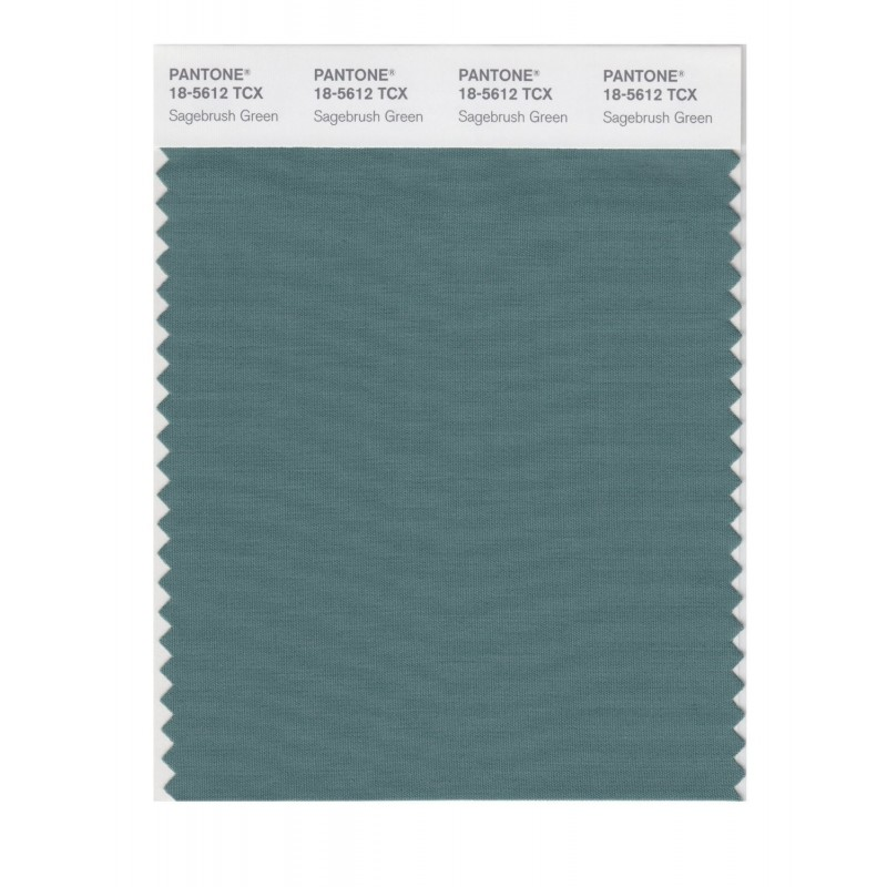 Pantone 18-5612 TCX Swatch Card Smoked Pearl