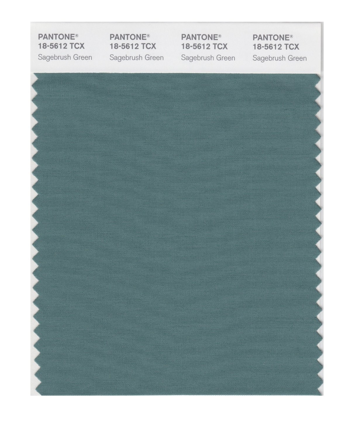 Pantone 18-5612 TCX Swatch Card Sagebush Green
