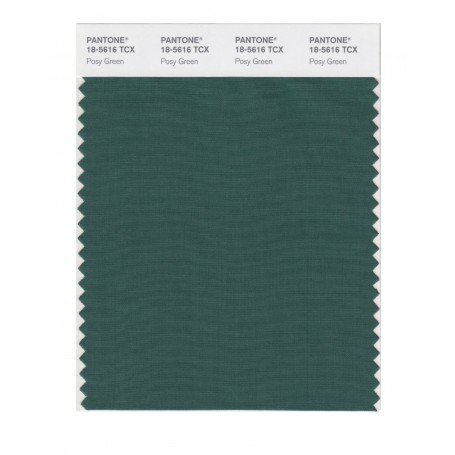 Pantone 18-5616 TCX Swatch Card Smoked Pearl