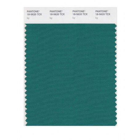 Pantone 18-5620 TCX Swatch Card Smoked Pearl