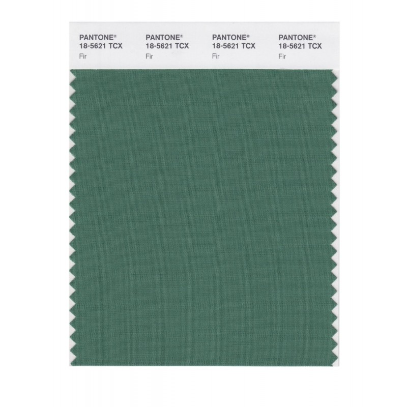 Pantone 18-5621 TCX Swatch Card Smoked Pearl