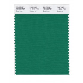 Pantone 18-5633 TCX Swatch Card Bosphorus