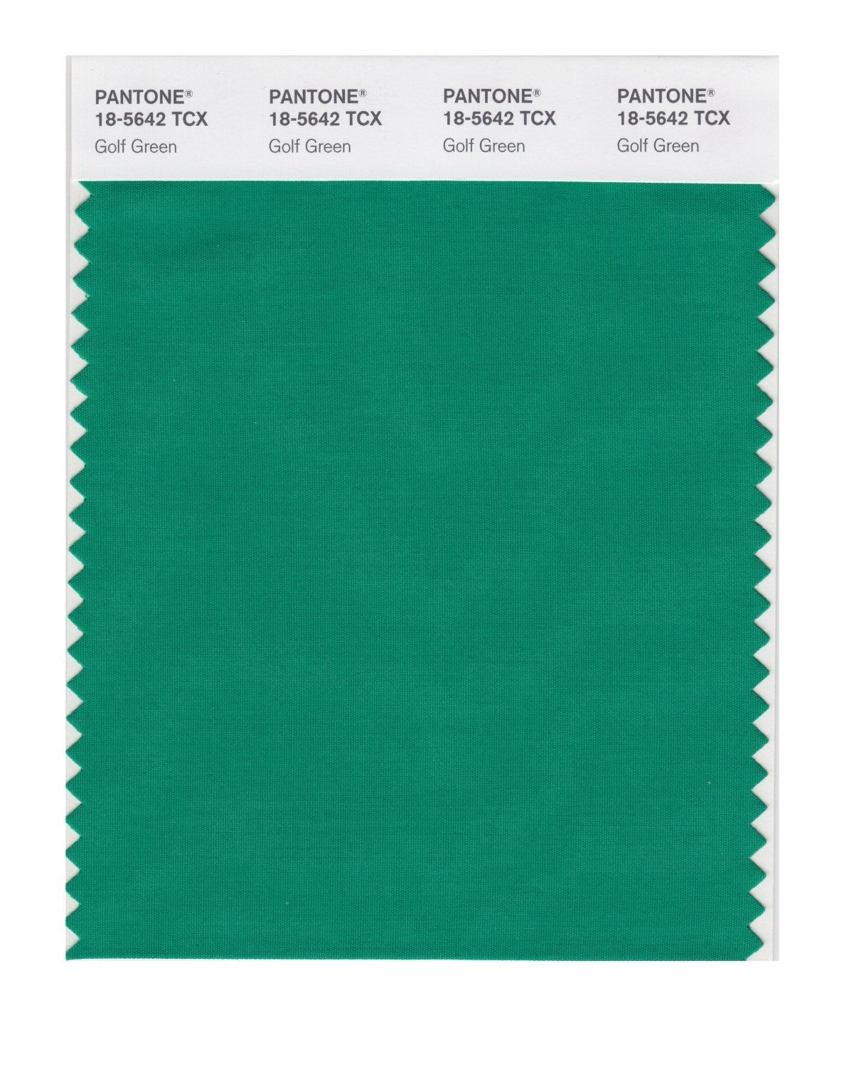 Pantone 18-5642 TCX Swatch Card Golf Green