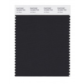 Pantone 19-0303 TCX Swatch Card Jet Black