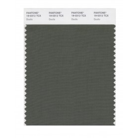 Pantone 19-0312 TCX Swatch Card Beetle