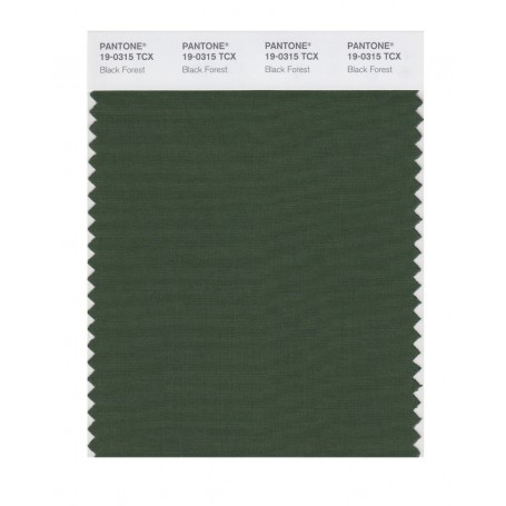 Pantone 19-0315 TCX Swatch Card Black Forest