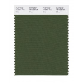 Pantone 19-0323 TCX Swatch Card Chive