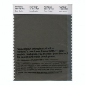 Pantone 19-0413 TCX Swatch Card Deep Depths