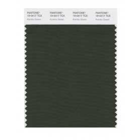 Pantone 19-0417 TCX Swatch Card Kombu Green