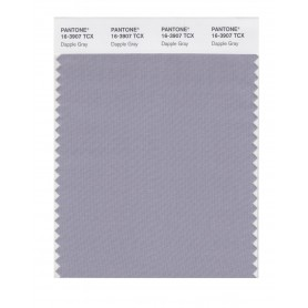 Pantone 16-3907 TCX Swatch Card Dapple Gray