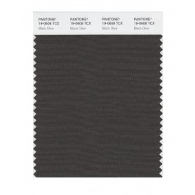 Pantone 19-0608 TCX Swatch Card Black Olive
