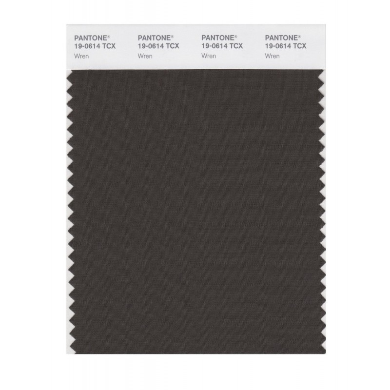 Pantone 19-0614 TCX Swatch Card Jet Black