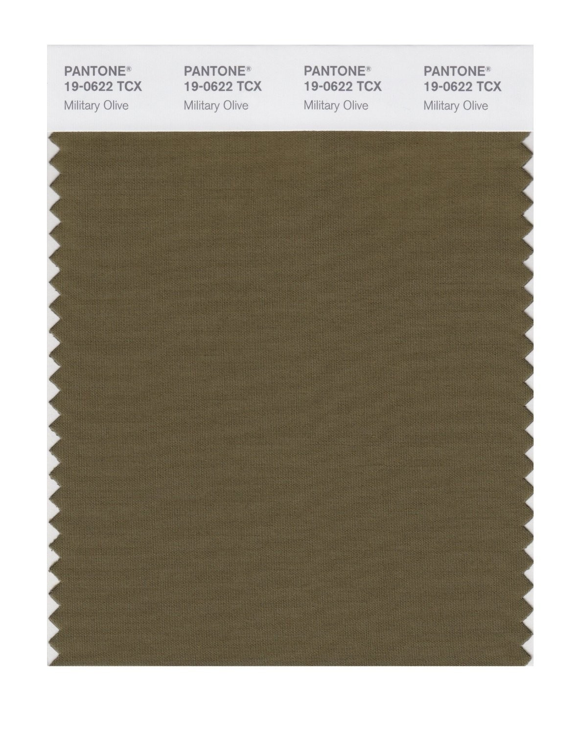 Pantone 19-0622 TCX Swatch Card Military Olive