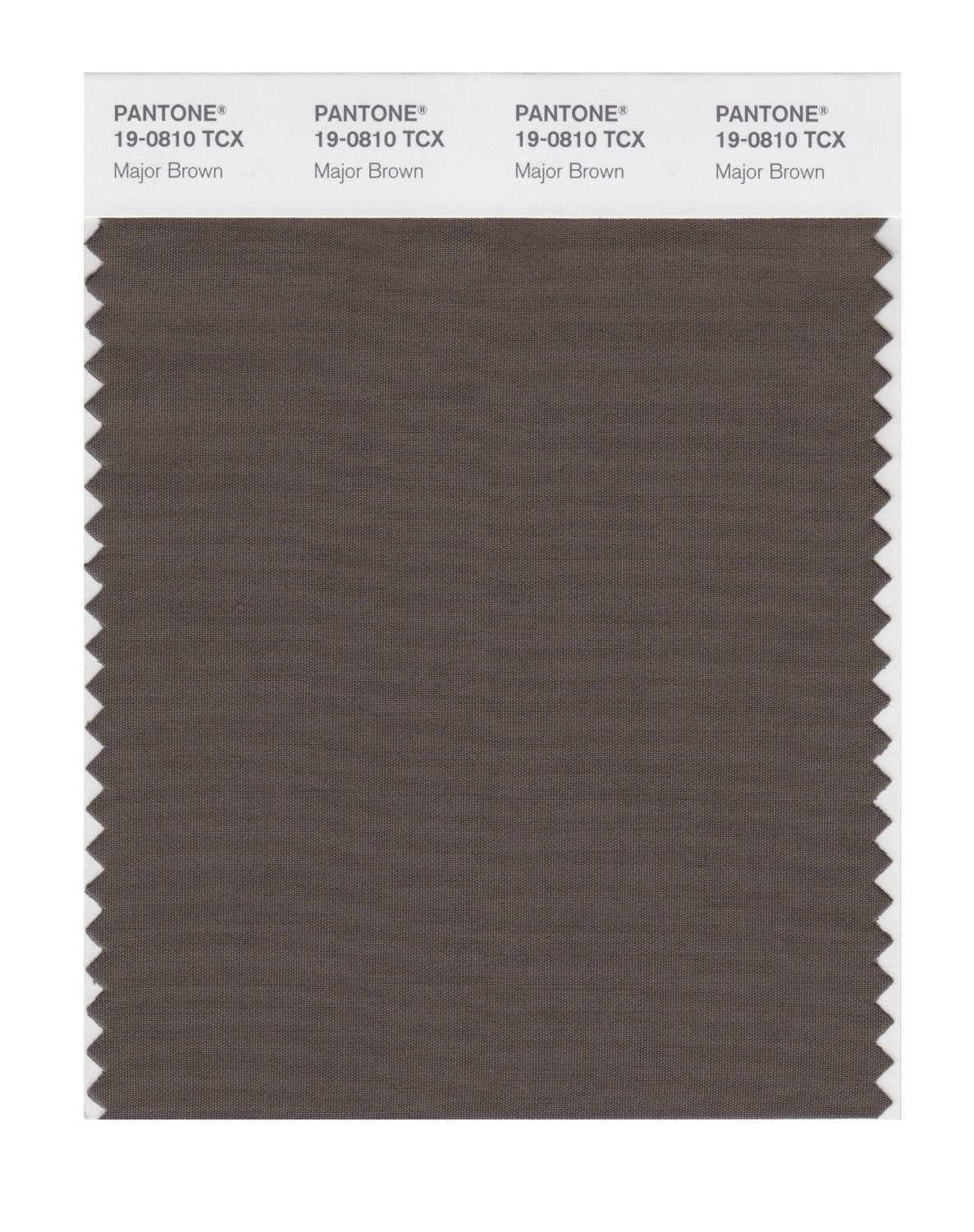 Pantone 19-0810 TCX Swatch Card Major Brown