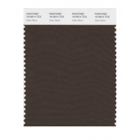 Pantone 19-0814 TCX Swatch Card Slate Black