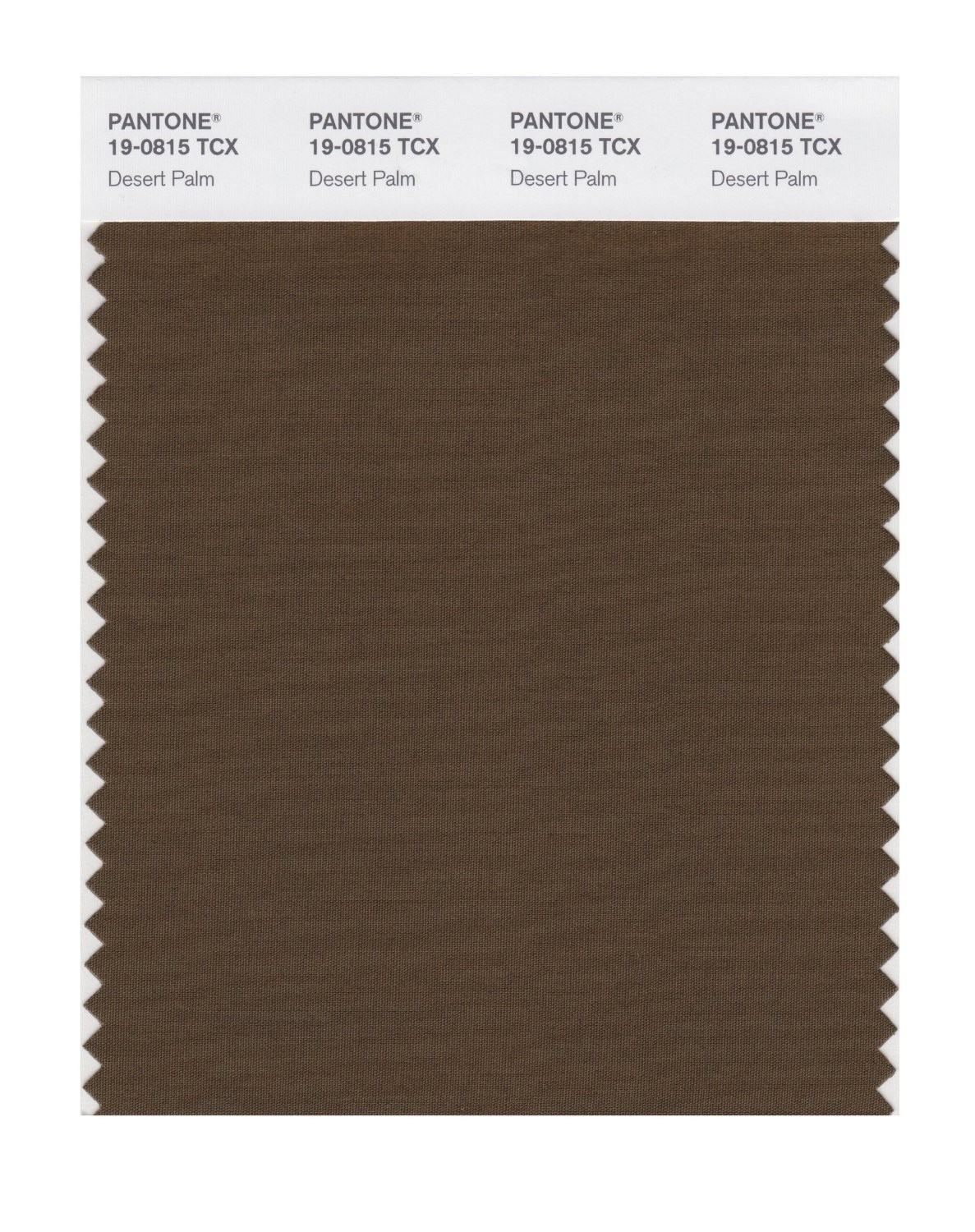 Pantone 19-0815 TCX Swatch Card Desert Palm
